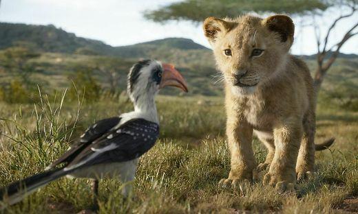 """""""Der König der Löwen"""" von Disney"""