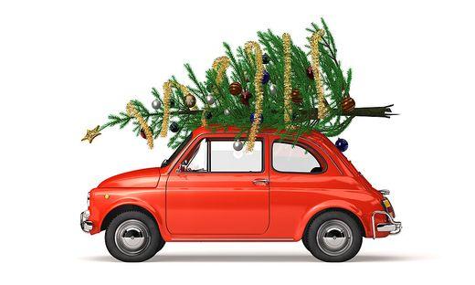 Wer den Baum auf dem Autodach transportiert, muss einiges beachten