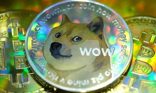 Die japanische Hunderasse Shiba Inus dient als Vorlage für das Doge-Maskottchen