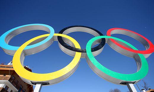 OLYMPIA - Olympische Spiele 2014, Vorberichte