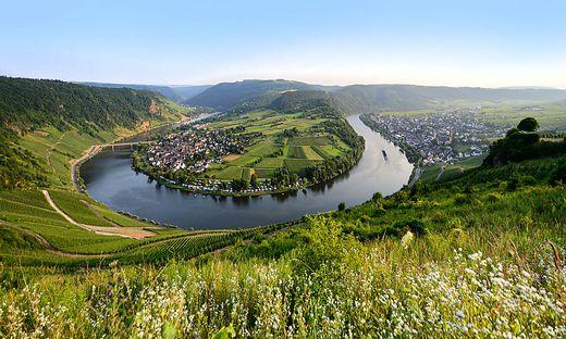 Herrliches Panorama an der Mosel bei Kroev
