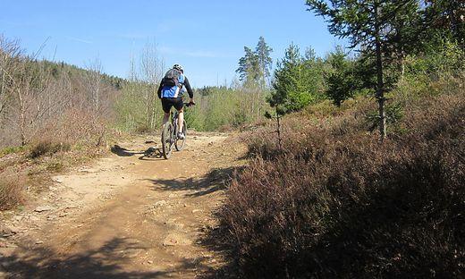 Für das Mountainbiken rund um Klagenfurt soll es zukünftig legale Strecken geben.