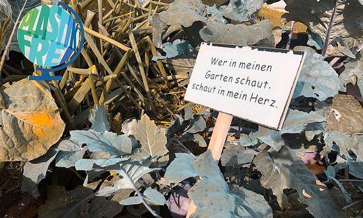 Wer Plastik sparen möchte, kann im eigenen Garten damit beginnen