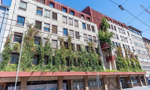 Die grüne Fassade kühlt die Straße vor dem Haus