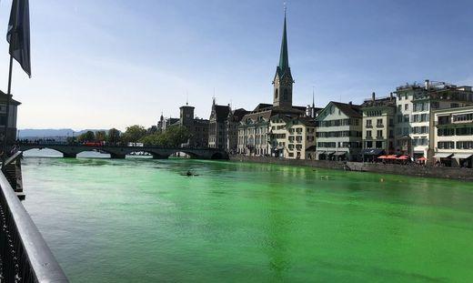 Umweltschützer färben Wasser in Dresdner Springbrunnen grün ein