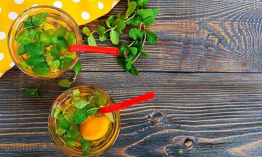 Rezept Fruchtige Marillenbowle Für Die Gartenparty