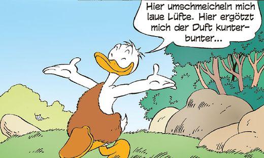 Erdverbunden zieht Donald in den Wald wie weiland Thoreau
