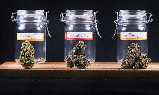 Marihuana Als Medizin
