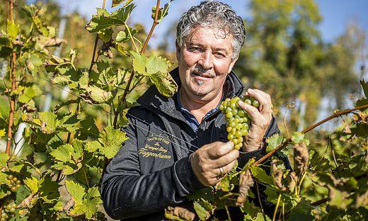 Hubert Vittori ist Winzer auf dem Weingut Taggenbrunn