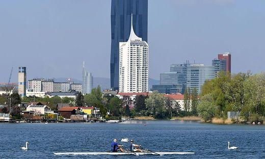 Die alte Donau