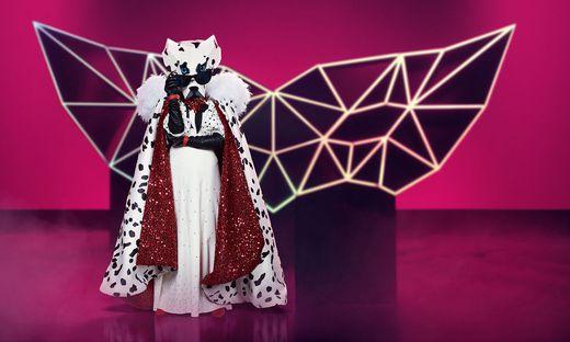 ´The Masked Singer´ / Der Dalmatiner