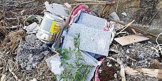 Grün- und Strauchschnitt wird überdeckt von Plastikmüll