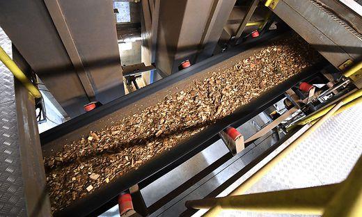 Teilweise werden Biomasse-Anlagen zurzeit sogar heruntergefahren