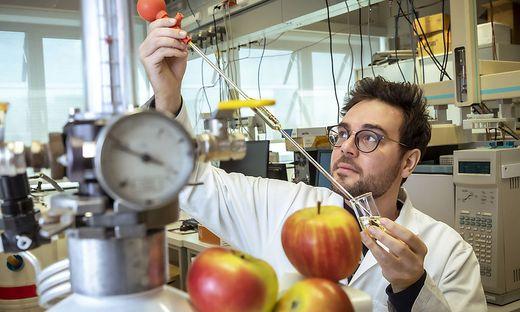 TU Graz, Lebensmittelchemiker Niklas Pontesegger