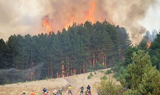 Feuerwehrleute aus Niederösterreich und der Steiermark helfen mit, Waldbrände in Nordmazedonien zu bekämpfen