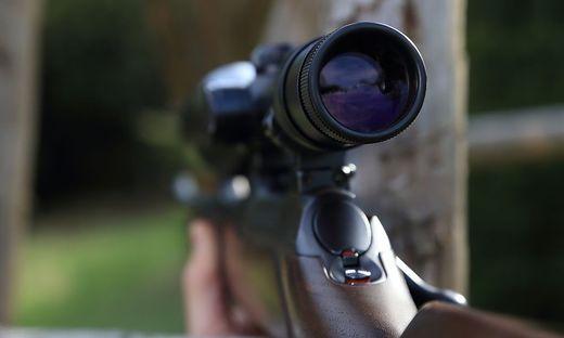 Werden Wölfe illegal abgeschossen? Wolfsexperten sind sich uneinig, ob diese These stimmen kann (Symbolfoto)