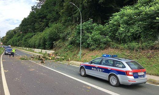 Bäume auf die Kärntner Straße gestürzt
