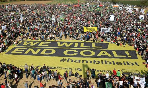 Proteste gegen Abholzung Anfang Oktober