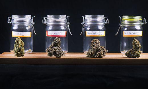 CBD ist das legale Cannabis
