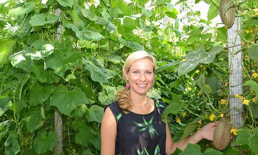 Doris Lengauer, Leiterin der Versuchsstation, mit einer exotischen Gurkensorte, die im Glashaus erprobt wird