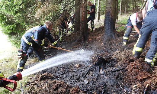 Die Feuerwehr löschte den Waldbrand