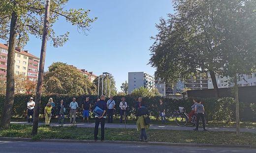 Baumspaziergang in Graz
