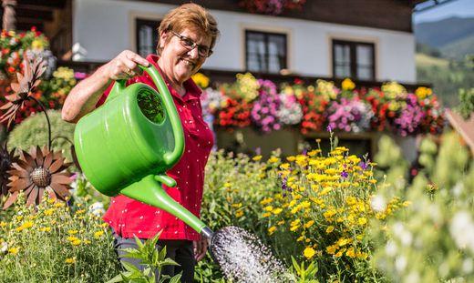 """""""Im Garten habe ich wieder Kraft bekommen"""" sagt Gretl Brugger"""