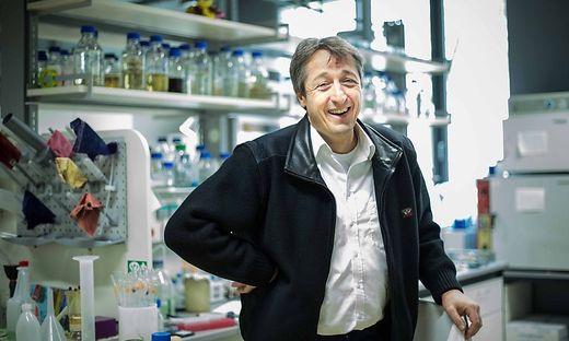Molekularbiologe Frank Madeo erhielt den Erzherzog-Johann-Preis des Landes Steiermark
