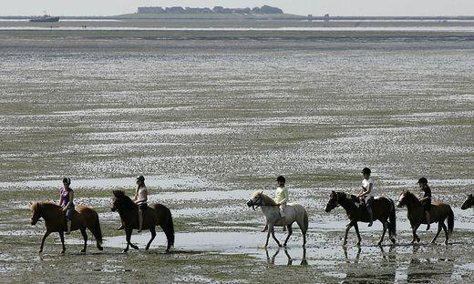 Das Wattenmeer zieht jährlich zahlreiche Touristen an