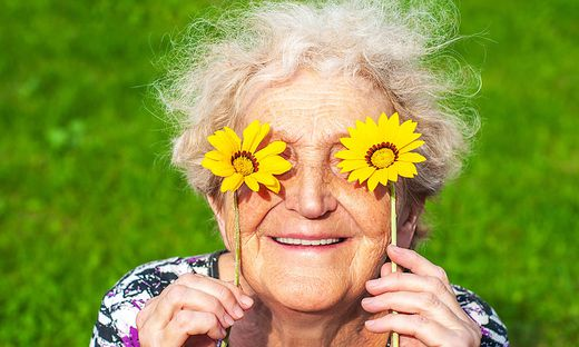 A cheerful grandmother looks at the flower look of yellow daisies. Women's health, skin care, eyesight, sunburn, healthy teeth, wrinkles in old age