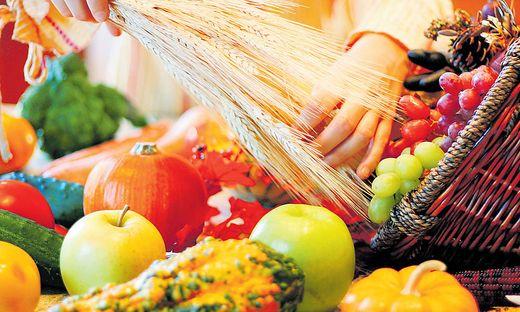 Um ein nachhaltiges  Ernährungssystem zu gewährleisten, muss nicht zwingend auf Fleisch verzichtet werden – der Konsum solle allerdings reduziert und der Anteil an veganen Produkten erhöht werden
