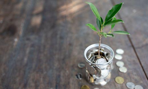 Gute Ideen müssen erst zum Geschäftsmodell wachsen