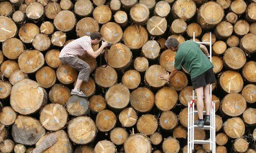 Holz ist zurzeit wieder heiß begehrt