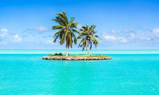 Der Traum vom Paradies: die klassische Insel mit Palmen