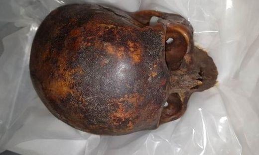 Gestohlener Mumienkopf wieder entdeckt
