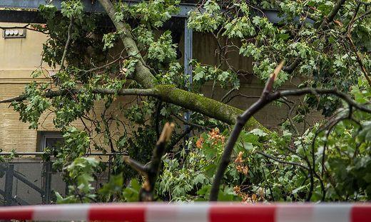 Auch in Graz richtete der Sturm Schäden an (Symbolfoto)