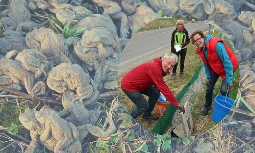 Das Ehepaar Graßberger und Renate Angerler beim Amphibienschutzzaun