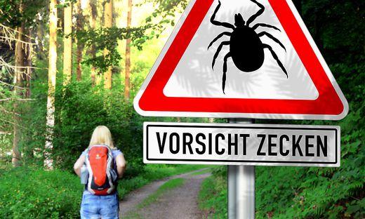 Zehntausende Borreliose-Neuerkrankungen gibt es jährlich in Österreich. Die FSME-Impfung schützt nicht