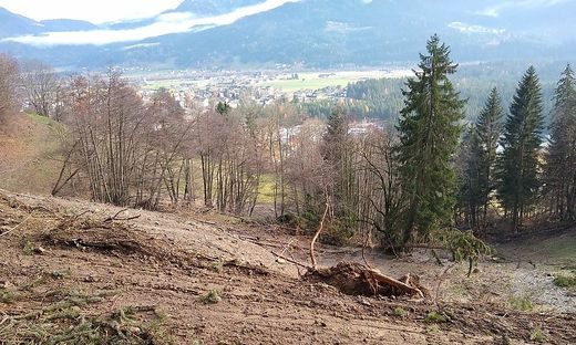 Zwei Muren, die vom Amberg in Richtung Hauzendorf abgegangen waren, förderten Müll an die Oberfläche