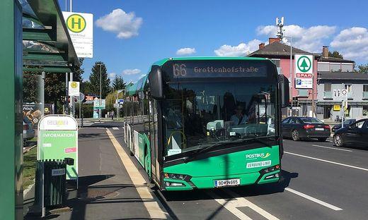 Buslinie 66