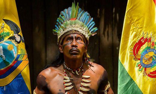 Dringend gesucht: Lösungen für Amazonien