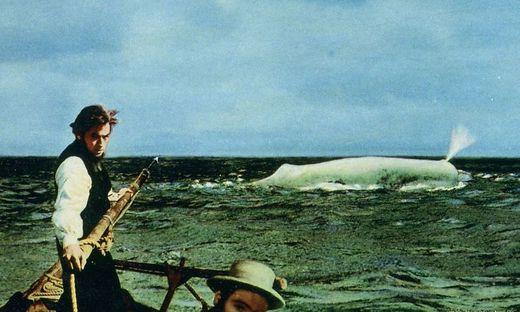 Szene aus der berühmten Moby-Dick-Verfilmung aus dem Jahr 1956 mit Gregory Peck als Kapitän Ahab