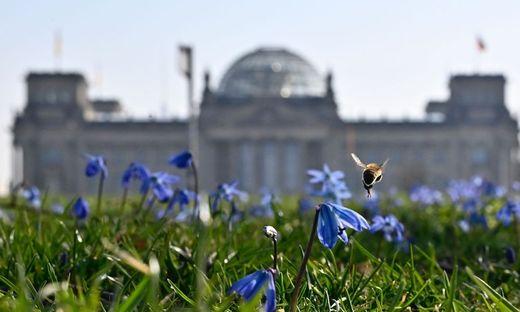 GERMANY-POLITICS-ECONOMY-PARLIAMENT-VIRUS