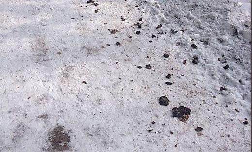 Immer häufiger werden Wege, wie jener in Warmbad, verschmutzt
