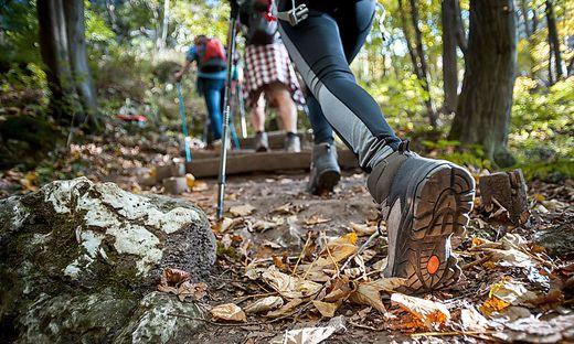 Wanderschuhe, der richtige Wanderschuh, Hikingschuh
