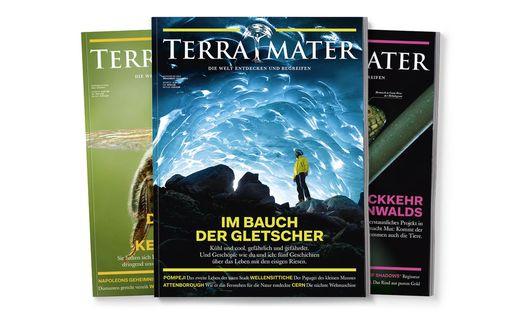 Holen Sie sich das Terra Mater Magazin und werden Sie ´Baumpate´