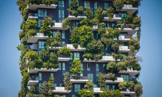Grüne Idee: Seit 2014 ragen in Mailand die Türme des Bosco Verticale in die Höhe