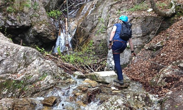 Klettersteig Falkert : Heidi alm falkert kindererlebnispark nockberge hotel eschenhof