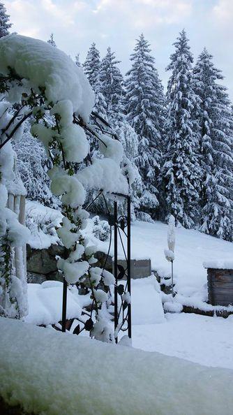 schnee der winter ende april in fotos. Black Bedroom Furniture Sets. Home Design Ideas