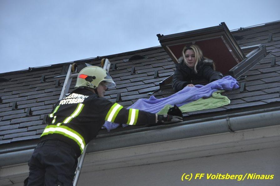 voitsberg feuerwehr rettete schwarze katze aus einer dachrinne. Black Bedroom Furniture Sets. Home Design Ideas